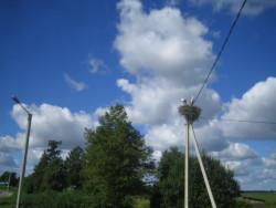 Viro, Pöltsamaa ja Viljandi , 1.-3.8.2005